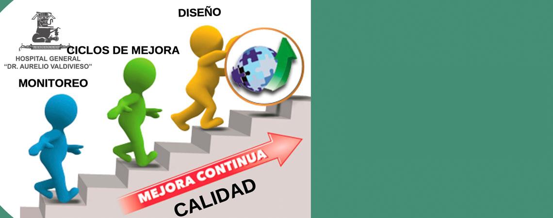 CURSO: CICLOS DE MEJORA DE LA CALIDAD